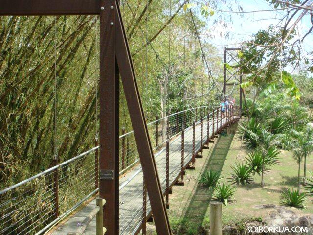 El puente Corgante